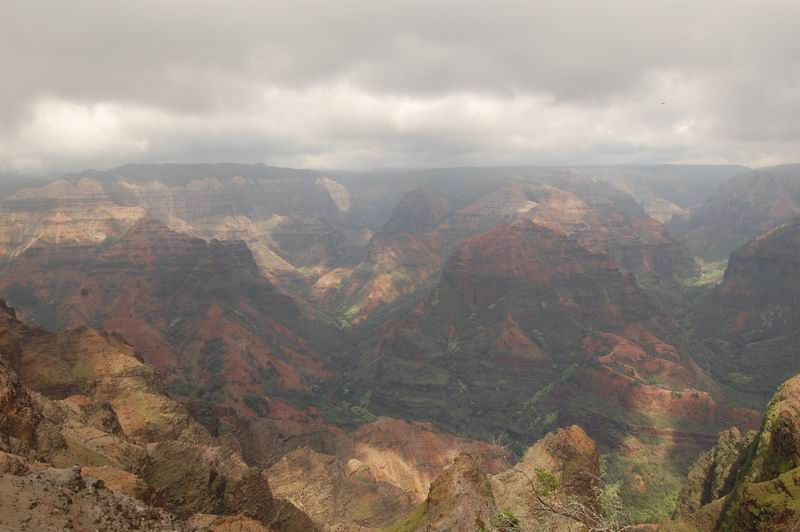 Lookout over Waimea Canyon