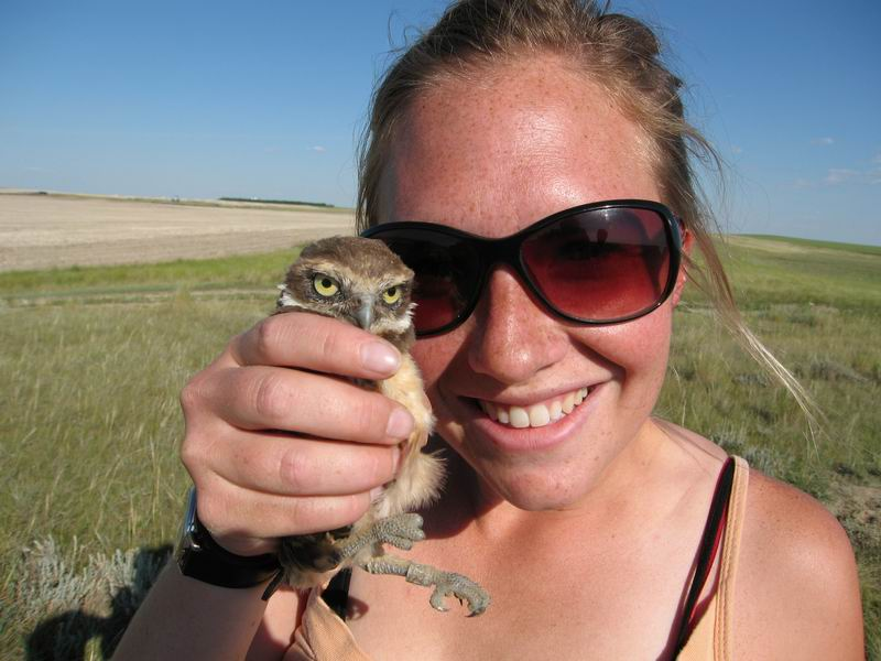 Burrowing owl research in Eatonia, SK
