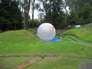Giant Zorb in action