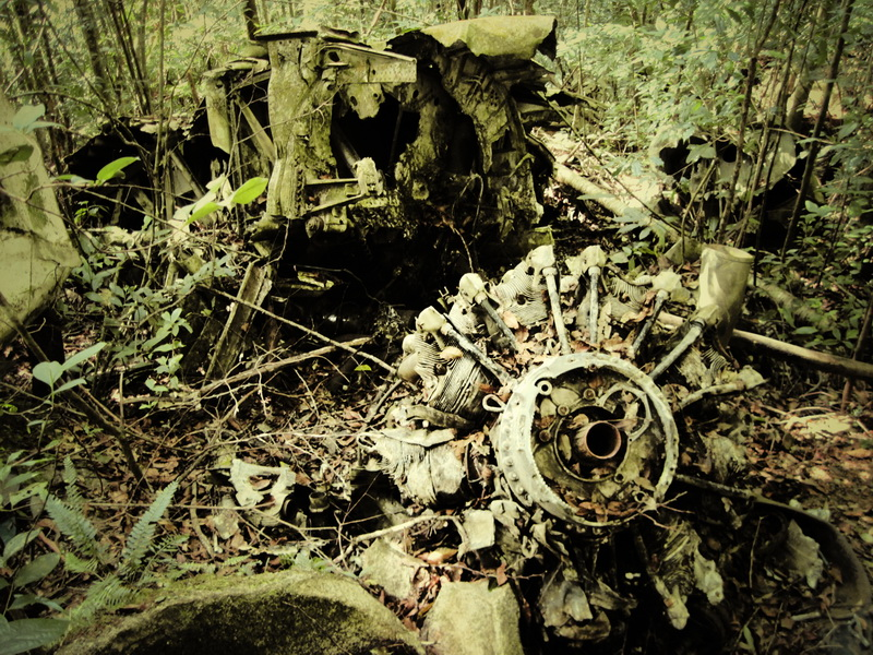 Some parts thrown into the jungle