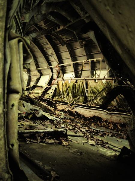 Looking through the fuselage