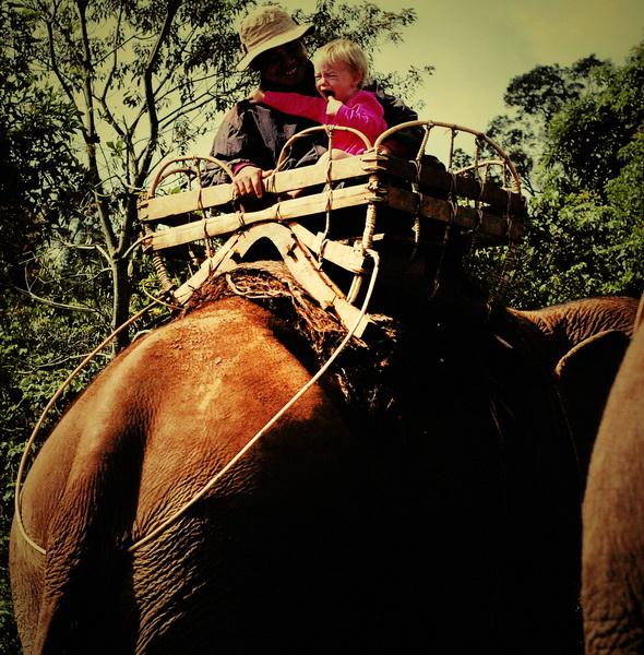 Aya rode an elephant! [and screamed like crazy]