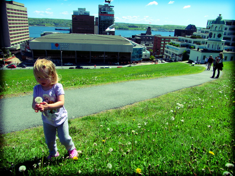 A stop in sunny Halifax for a day