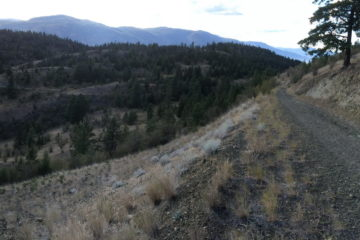 Overlooking trails in Stephens Coyote Ridge