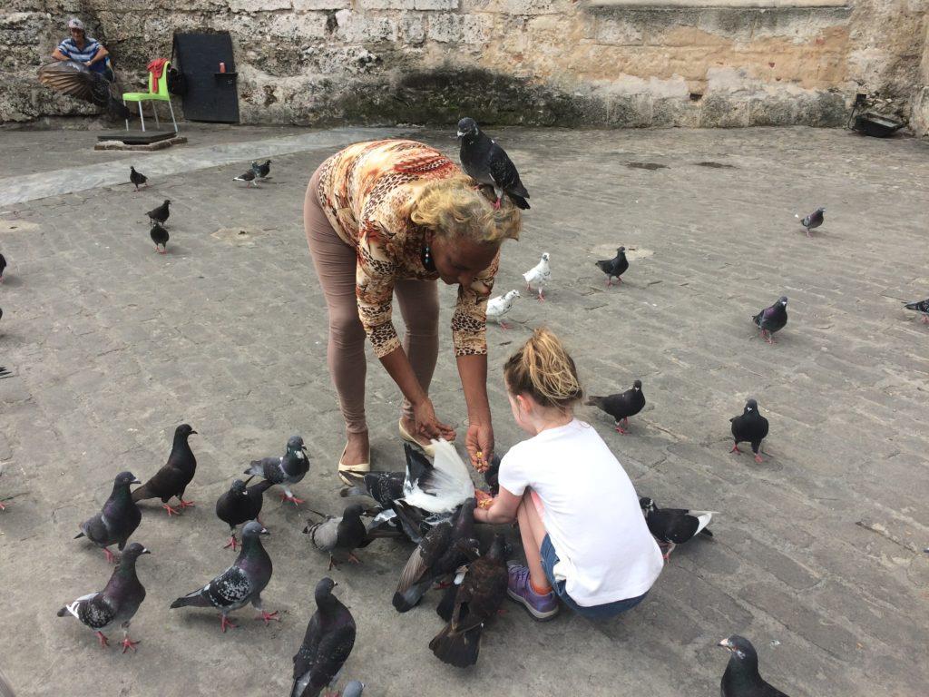 Pigeon feeding at Plaza Vieja