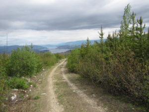 Service Road up to Okanagan Mountain Summit