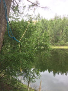 Rope swing into Lightblue lake