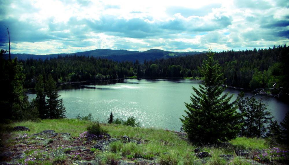 View of Hayman Lake