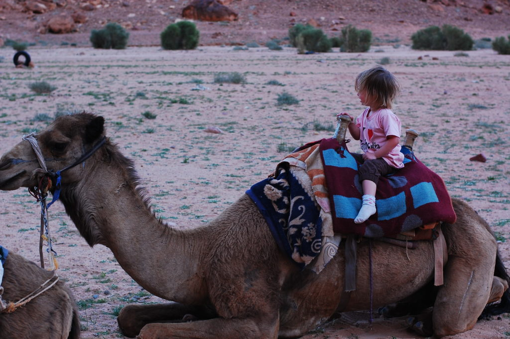 Wadi Rum camel ride