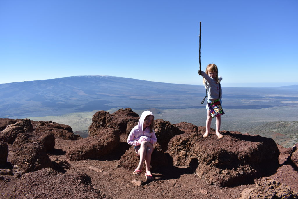 Mauna Loa in the distance